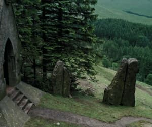 film, forest, and harry potter image