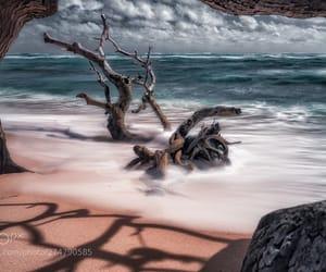 beach, coastline, and idyllic image