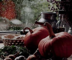 fall, food, and Halloween image