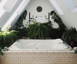 bathroom, it's, and plants image