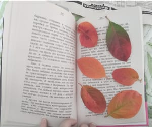autumn, book, and September image