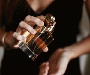 beauty, girls, and parfüme image