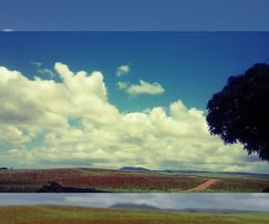 beauty, paradise, and blue sky image