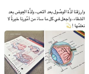 school, تَفائَل, and ﻋﺮﺑﻲ image
