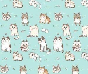 wallpaper cats image