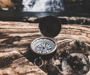 compass, forest, and landscape image