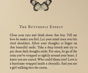 books, butterfly, and quote image