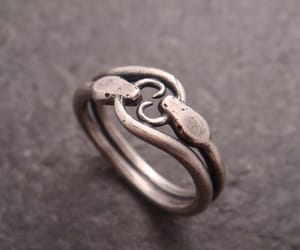 ring and ouroboros image