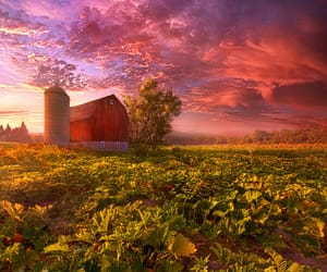 autumn colors, landscape photography, and wisconsin image