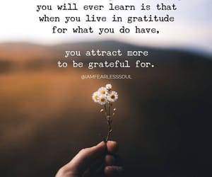 appreciation, gratitude, and true image
