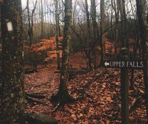 fall, hike, and photography image