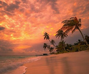 amazing, autumn, and beach image