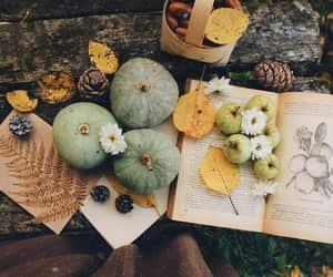 pumpkin, autumn, and book image
