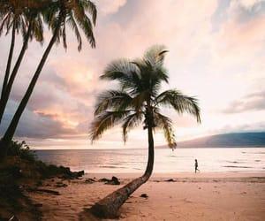 belleza, paisaje, and summer image