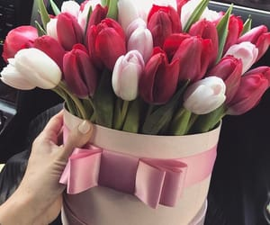 flowers, gift, and girly image