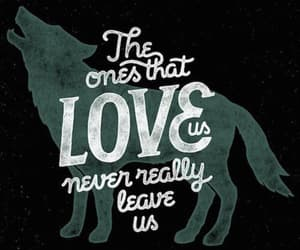 quotes, harry potter, and sirius black image