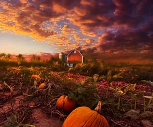 autumn colors, landscape photography, and tumblr image