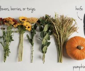 craft, diy, and fall image