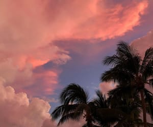 pink, sunset, and sky image