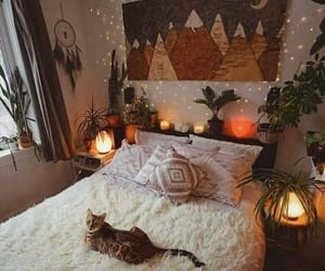 bedroom, cat, and room image