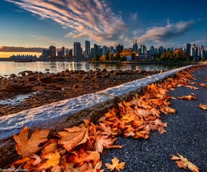 autumn colors, canada, and blue skies image