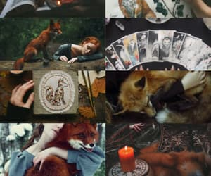 witch aesthetic, animal, and witchcraft image