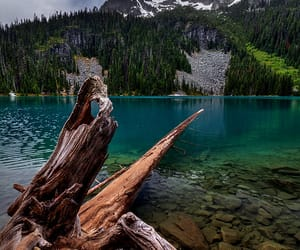 canada, driftwood, and mountains image