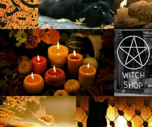 black cat, candles, and fall image