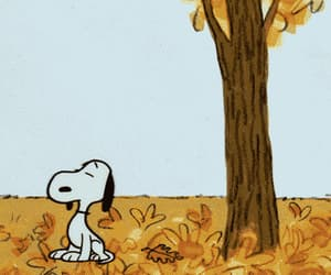 gif and snoopy image