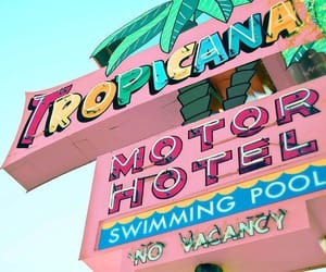 cutie, motel, and pastel image