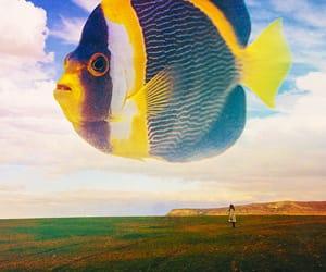 art, surrealism, and artists on tumblr image