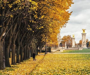 autumn, coffee, and paris france image