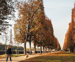 autumn, paris france, and sweaters image