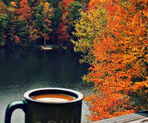 coffee, fall, and lives image