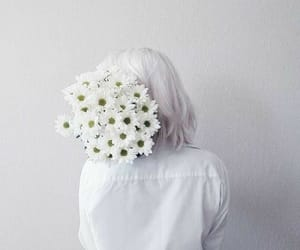 white, flowers, and aesthetic image