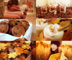 autumn, october, and yellow image