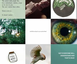aesthetic, harry potter, and wizard image