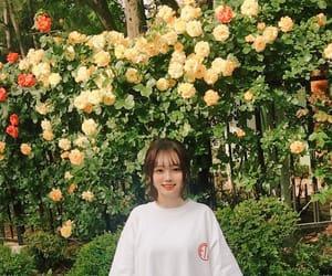 asians, greenery, and korean image