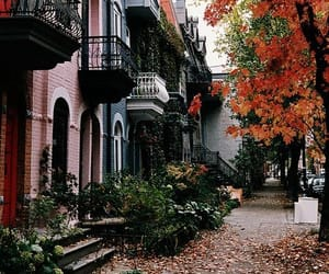 autumn and street image