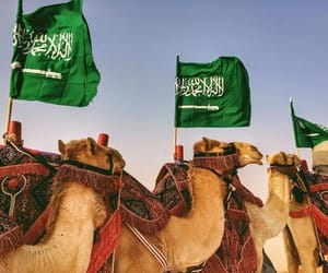 kingdom, saudi arabia, and حُبْ image