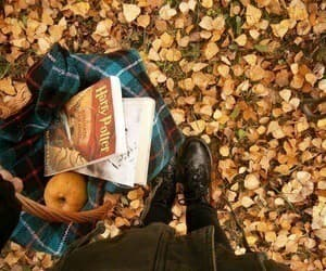 autumn, slytherin, and the golden trio image