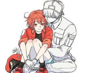kawaii, cute, and hataraku saibou image