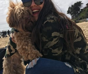 chile, dog, and happy image