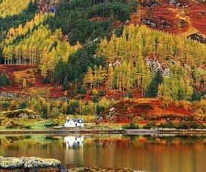 autumn, nature, and scotland image