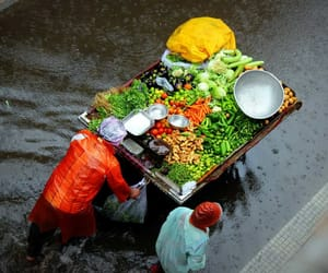 colors, rain, and vegetables image
