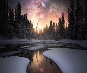 winter, nature, and night image