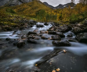 autumn colors, nature photography, and river image