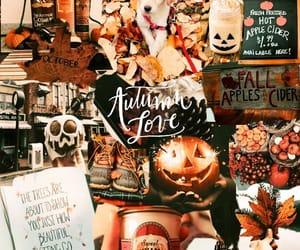 autumn, Halloween, and november image