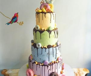 bird, party, and birthday image