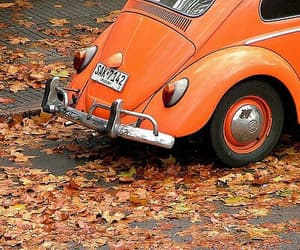 orange, autumn, and car image